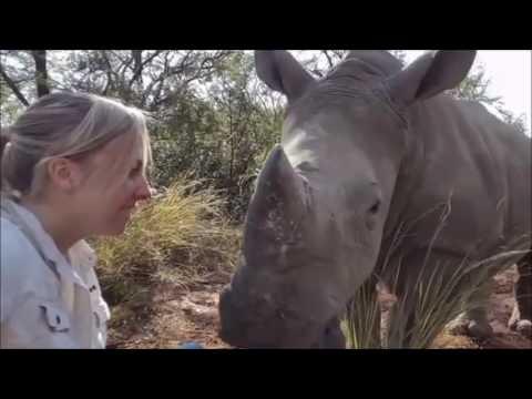 Love orphaned baby rhino afraid sleep alone