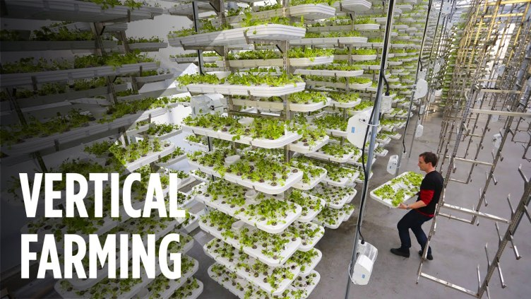 How Vertical Farming Works to Maximize Crop Output While ...