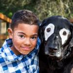 White Eyed Rowdy, A Beautiful Black Therapy Dog With a White Vitiligo Mask Around His Eyes