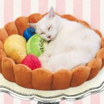 A Yummy Cat Bed Shaped Like a Fluted Tart Crust That Comes With Plush Fruit to Keep Kitty Company
