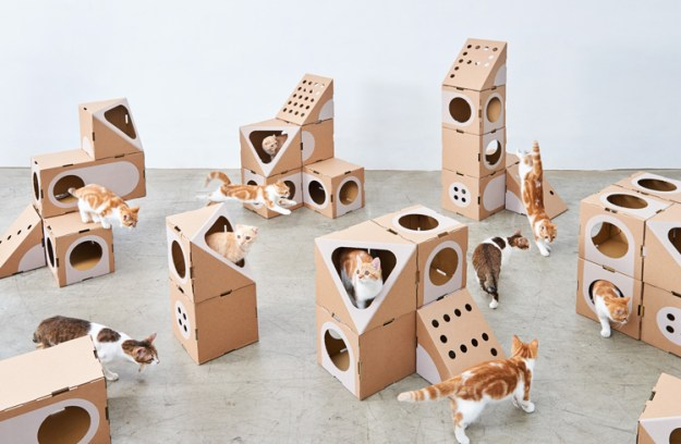 multi-cat-thing Wonderfully Modular, Interchangeable Cardboard Cat Dwellings Designed by Taiwanese Architects Random