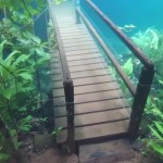 Mesmerizing Footage of a Brazilian Hiking Trail Submerged Under Crystal Clear Water By Heavy Rain