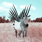 Imaginative Animals in Unusual Situations Created From Real Images Manipulated With Photoshop
