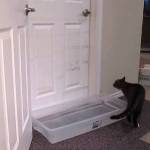 A Determined Cat Figures Out How to Get Around a Homemade Water Trap To Open a Closed Door