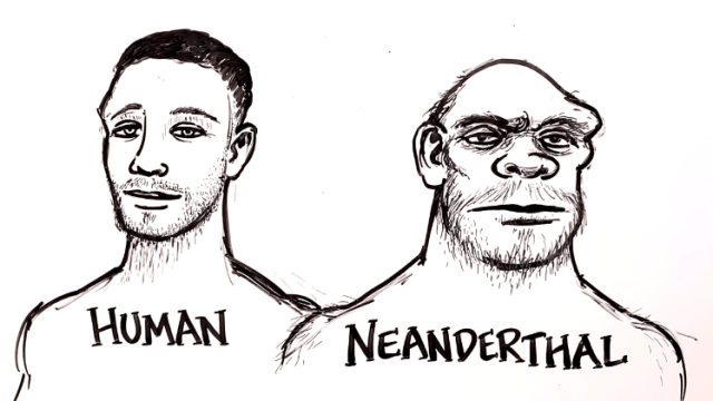 An Animated Timeline of Human Evolution Over Seven Million Years as