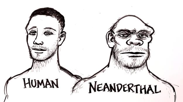 human-neanderthal How the Archaic Neanderthal Species Continues Live on Through Modern Human DNA Random