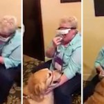 Blind Woman Using Special Glasses Sees Her Guide Dog For the First Time in Their Eight Years Together