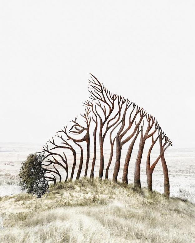 Zebra-Tree Mesmerizing Composite Photos Merging Animals With Surreal Interpretations of Their Natural Environments Random