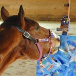 A Rescued Retired Racehorse Finds a Creative Second Career as a Highly Successful World Famous Artist