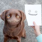 Dad Turns His Sons' Drawings Into Surreal Photos