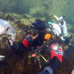 Research Diver Holds Hands With a Gregarious Seal