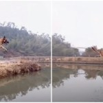 Nimble Dog Effortlessly Jumps Across a Canal