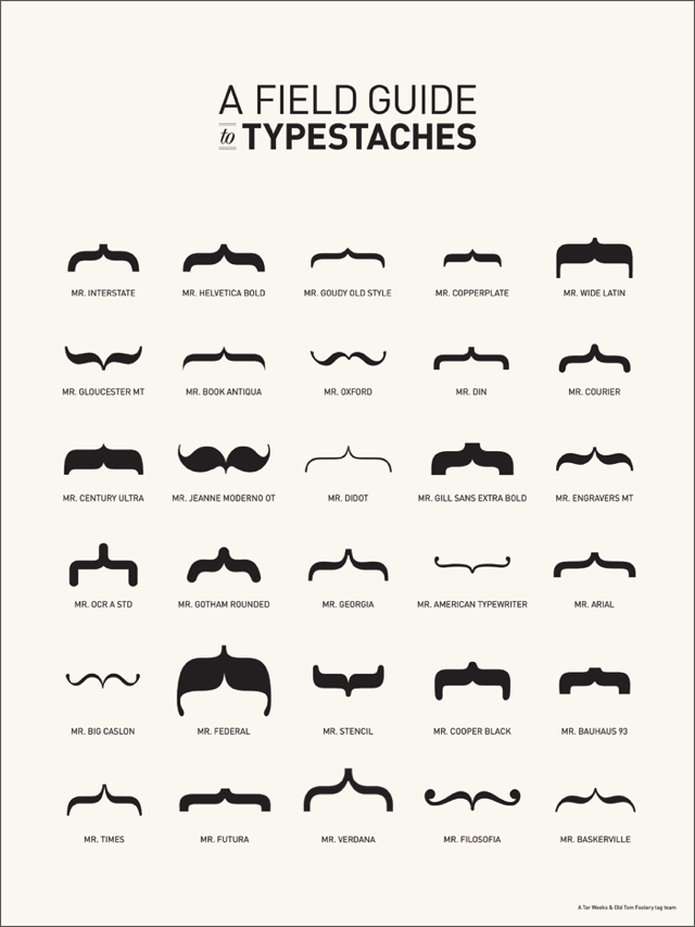 A Field Guide to Typestaches