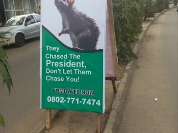 Rats chased president buhari