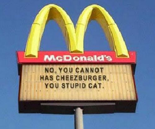 No can has cheezburger