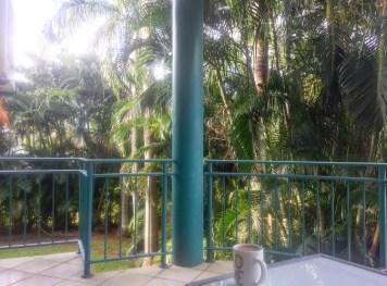 My lovely, tropical balcony.