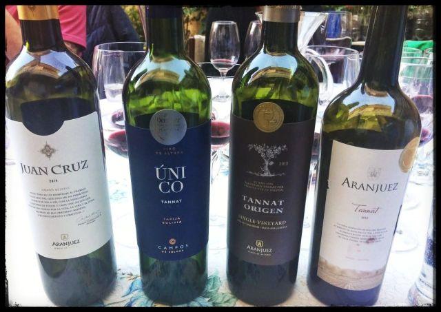 vinos tannat bolivianos