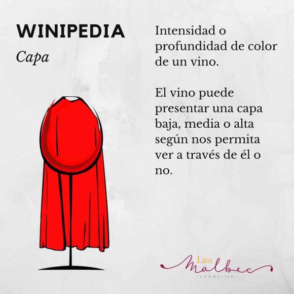 Winipedia Qué es la capa del vino
