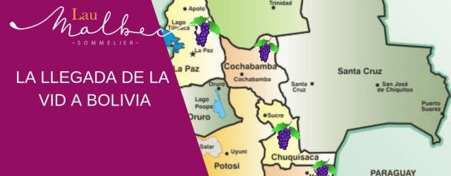 La llegada de la vid a Bolivia. Historia del vino de Bolivia.