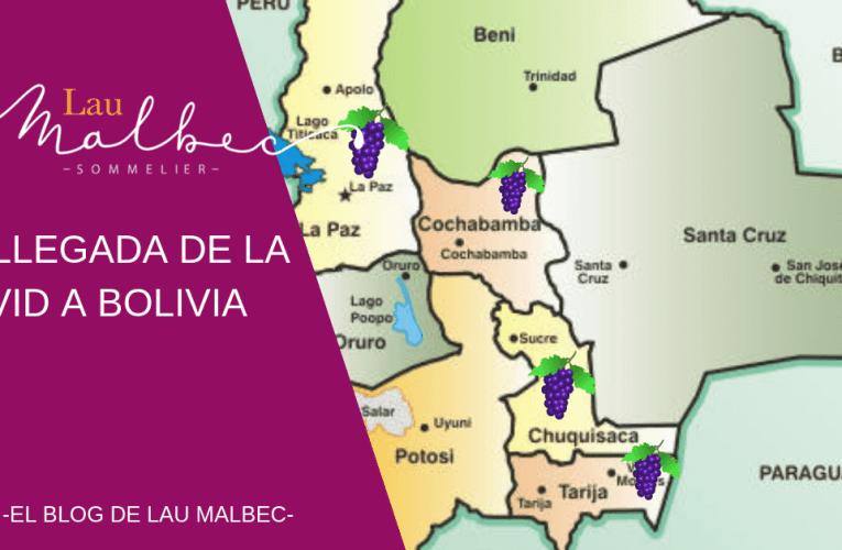 La llegada de la vid a Bolivia