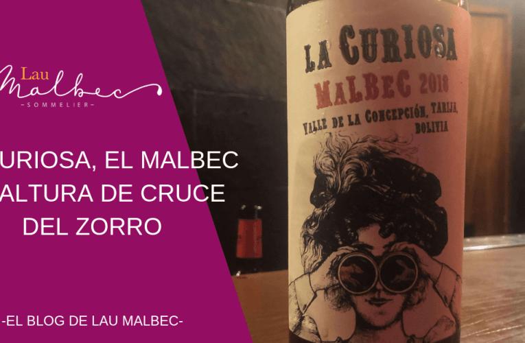 La Curiosa, el Malbec de altura de Cruce del Zorro