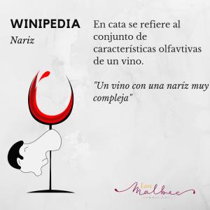 Qué es la nariz de un vino #Winipedia