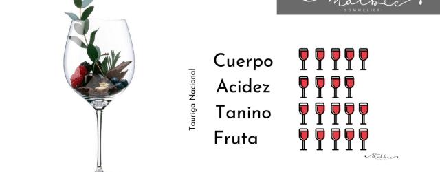 Touriga Nacional cepa tinta Dão Portugal