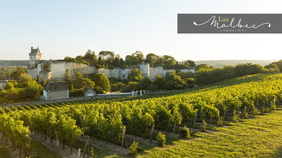 Vino Valle del Loira