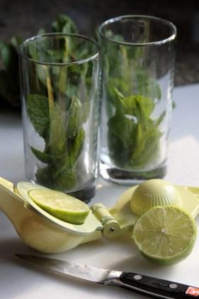 Mojito Ingredients