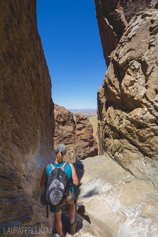 window trail big bend