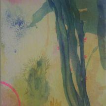 Kaktus, Aquarell