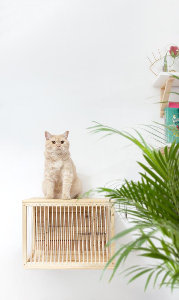mobiliario para gatos