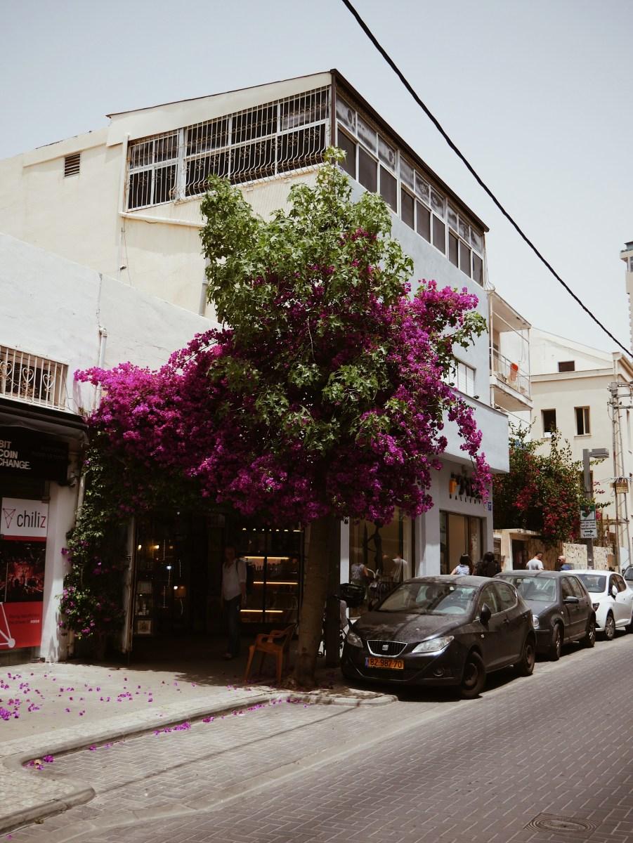 Cityguide: Tel Aviv