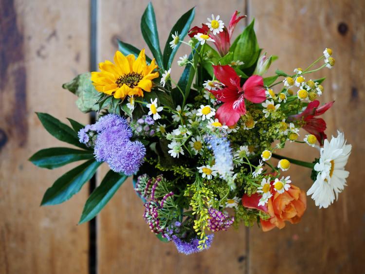 Blumenstrauß pfluecken