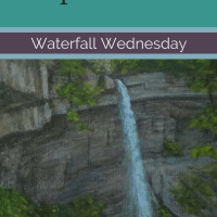 Waterfall Wednesday: Carpenter Falls