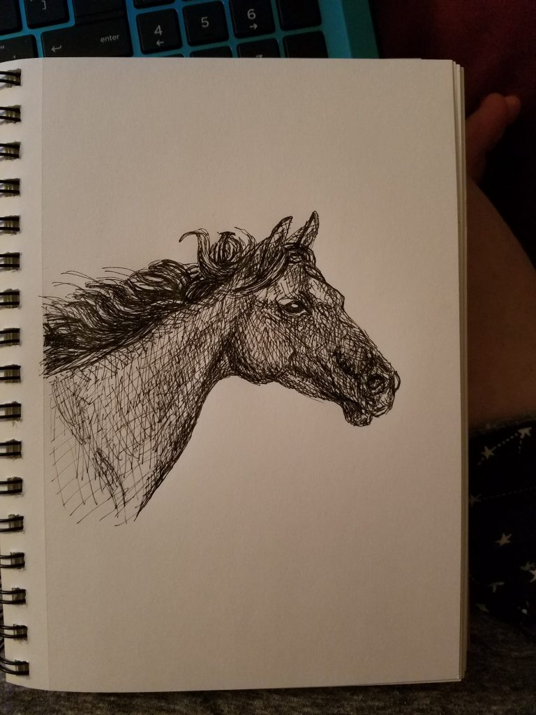 Sketchbook view of Star by Laura Jaen Smith. Black and white ink drawing of horse head with star marking on forehead.