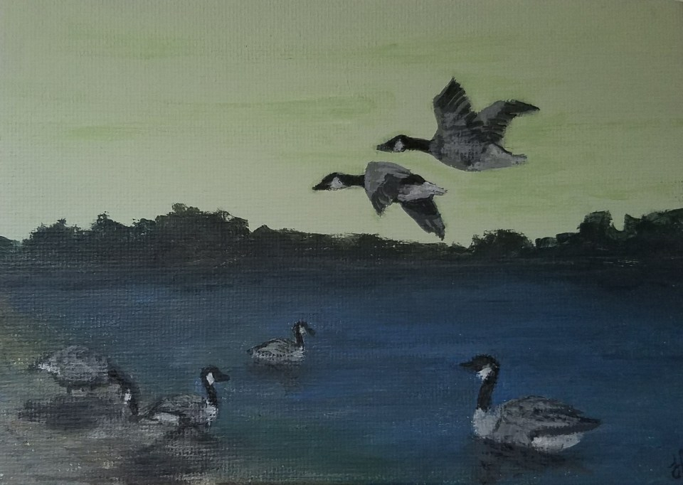 Six Geese (A Laying) by Laura Jaen Smith