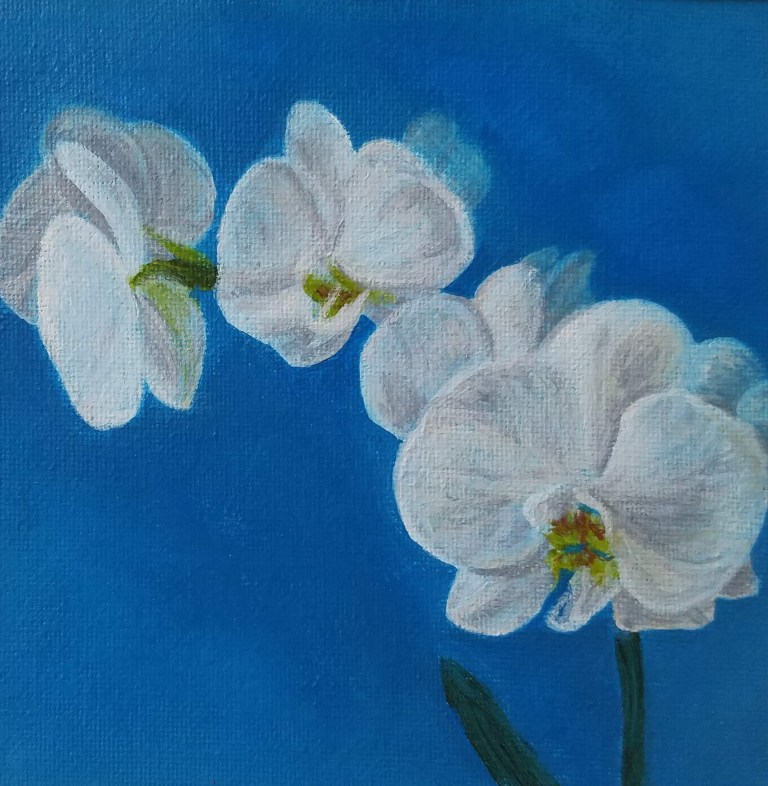Orchid with Blue by Laura Jaen Smith. Acrylic painting of white orchid with blue background.