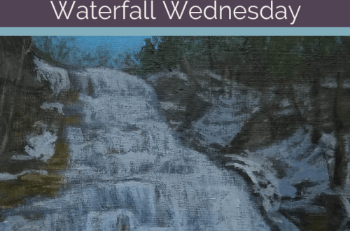 Hector Falls Waterfall Wednesday blog cover