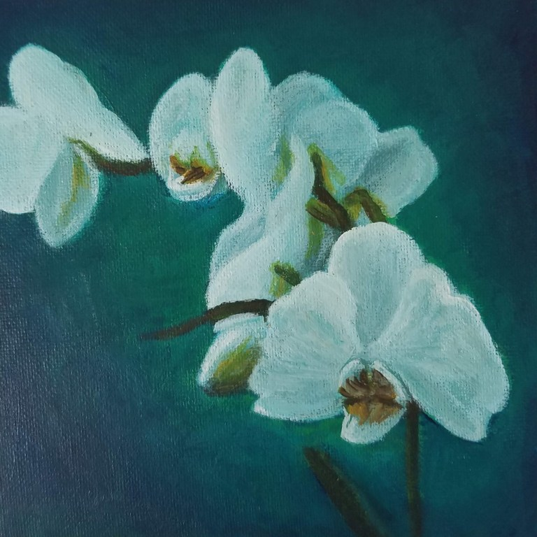 Orchid with Teal by Laura Jaen Smith. Square acrylic painting of white orchid with teal background.