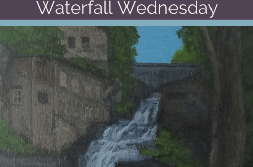 Businessman's Lunch Falls Waterfall Wednesday blog cover
