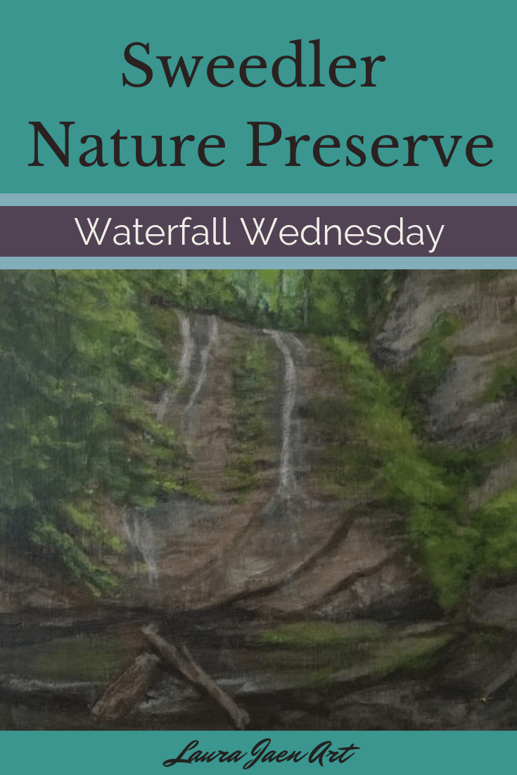 Sweedler Nature Preserve waterfall wednesday blog cover