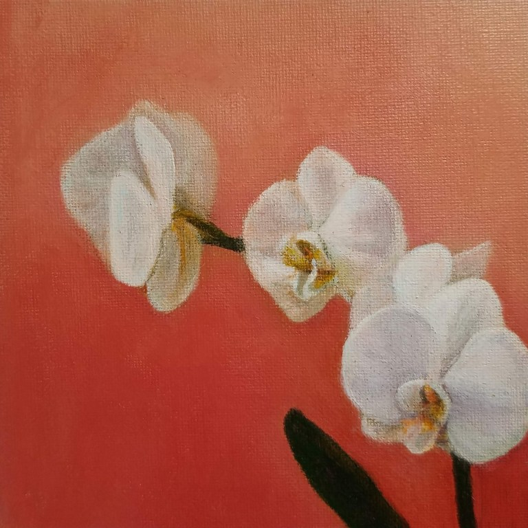 Orchid with Peach by Laura Jaen Smith. White orchid square acrylic painting against peach pink background.