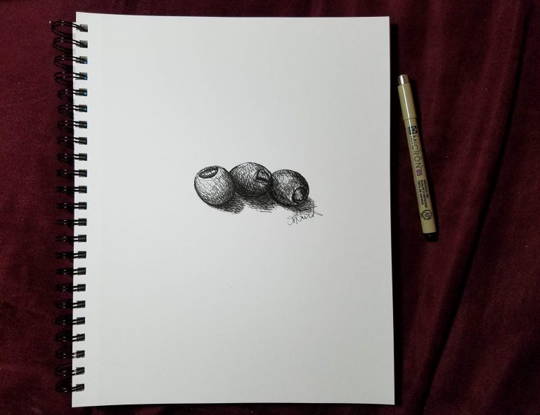 Sketchbook view with pen of Olives by Laura Jaen Smith. Black and white ink drawing of three olives.