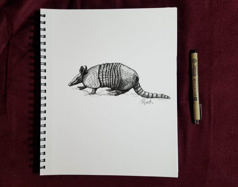 Sketchbook view with pen of Armadillo by Laura Jaen Smith. Black and white ink drawing of armadillo.