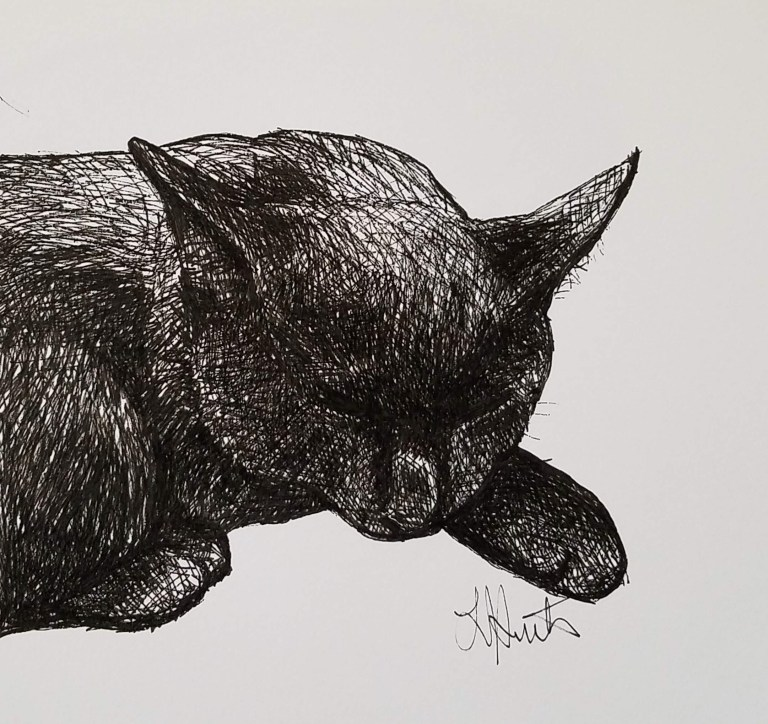 Black Kitten by Laura Jaen Smith. Black and white ink drawing of a black cat head and front paws curled up sleeping.