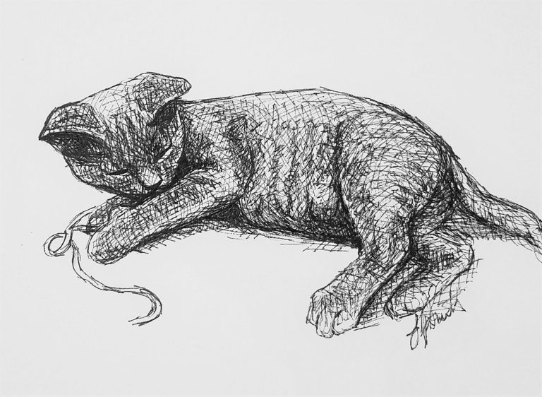 Grey Kitten by Laura Jaen Smith. Black and white ink drawing of grey kitten laying down playing with a string