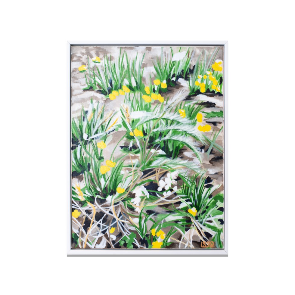 De Haan Dandelions, acrylic on canvas, 30 x 40 cm, 2020, sold (available as poster and card)