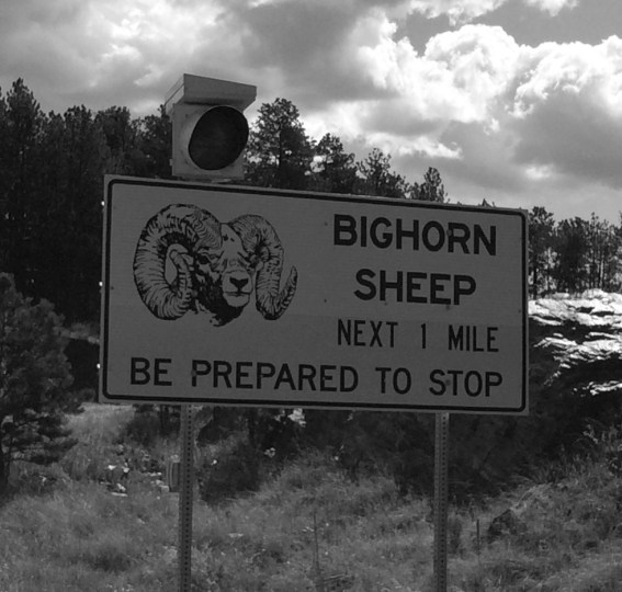 Sign near Hill City, South Dakota.
