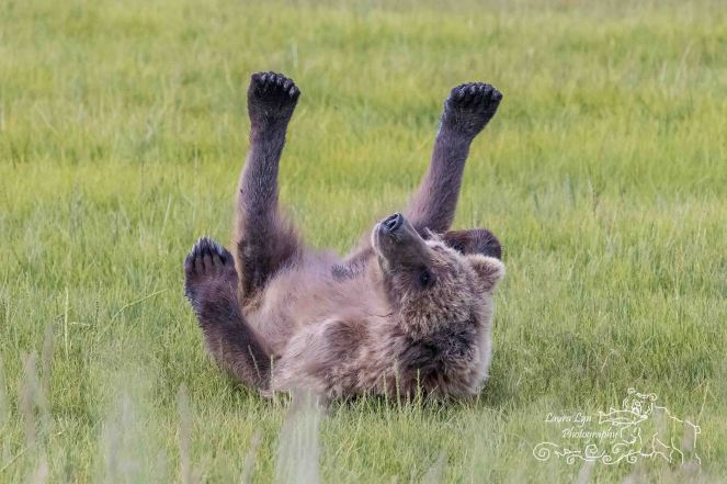 Bear Lake Clark June 28 (16 of 5) WEBSITE2